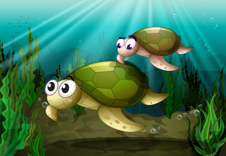 sea turtle: illustration of a tortoise under sea water