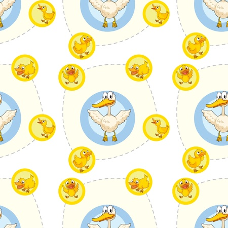 duckling: illustration of a ducks on a white background