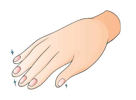 finger nails: illustration of a hand on a white background Illustration