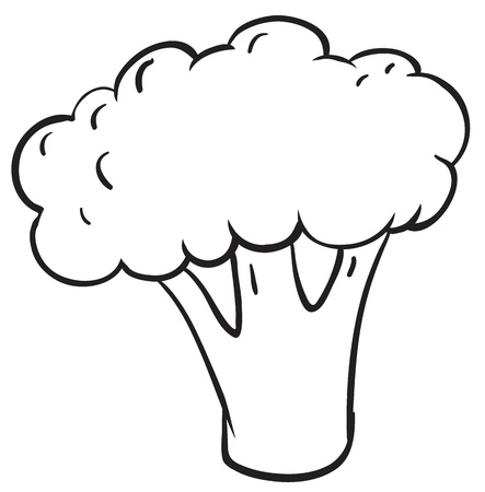 foodstuff: illustration of cauliflower on a white background Illustration