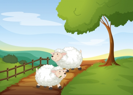 cartoon sheep: illustration of sheeps in a beautiful nature