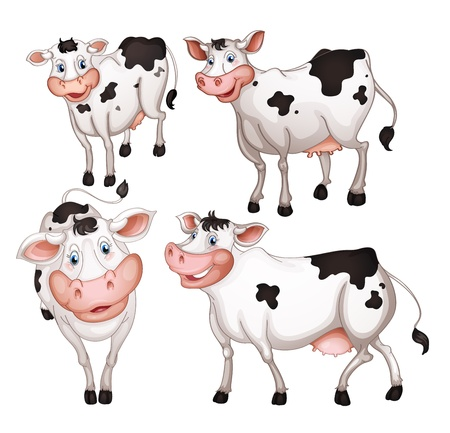 milk cow: illustration of four cows on a white background