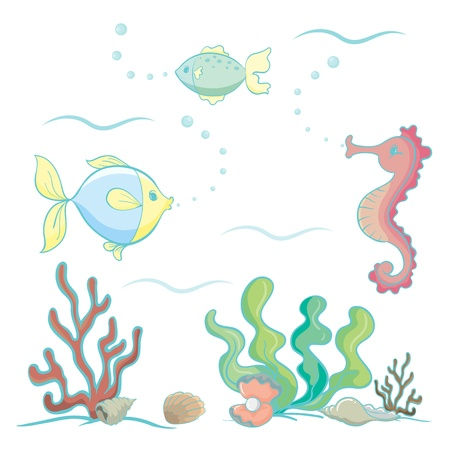 under the sea: illustration of various sea animals and plants on a white background