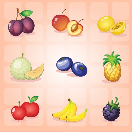 illustration of various fruits on a red background Vector