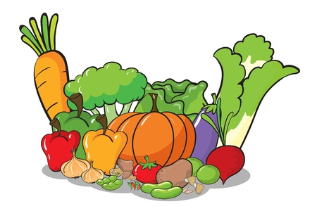 celery: illustration of vegetables on a white background Illustration