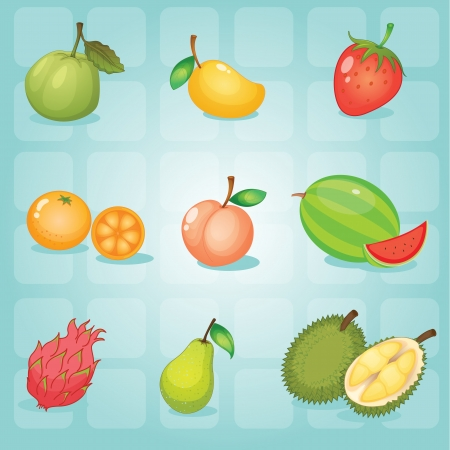 rambutan: illustration of various fruits on a blue background