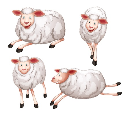 illustration of four sheeps on a white background Vector