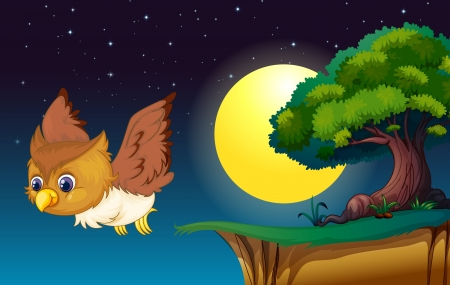 illustration of an owl in a dark night Vector