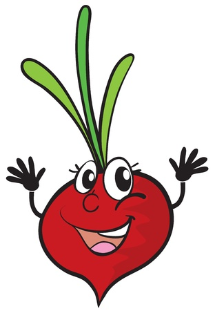 fruit clipart: illustration of a beetroot on a white background Illustration