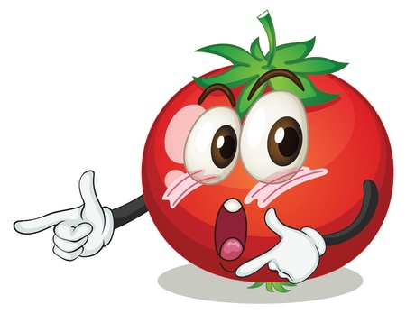 illustration of a tomato on a white background Vector