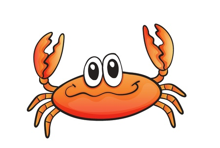 crab: detailed illustration of a crab on a white background Illustration