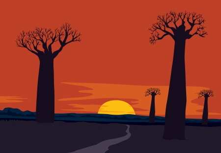 baobab: detailed illustration of sun and trees in nature