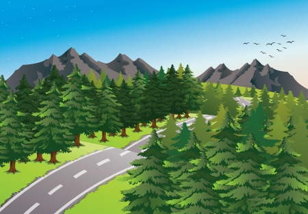 detailed illustration of a road in beautiful nature Vector