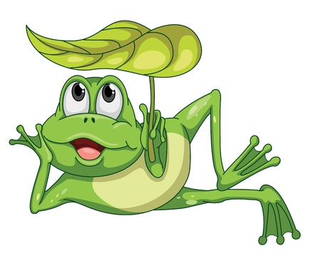 funny creature: detailed illustration of a green frog and a leaf