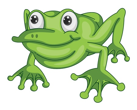 illustration of a green frog on a white background Vector