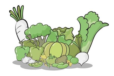 cucumber salad: Ilustraci�n de los varios veh�culos en un fondo blanco
