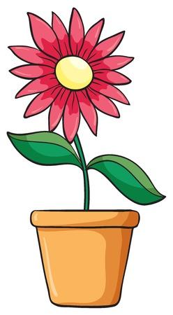ollas de barro: ilustración de una planta de flor en una maceta sobre un fondo blanco Vectores