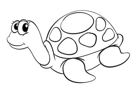 tortuga caricatura: Ilustración de un boceto tortuga en un fondo blanco Vectores