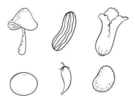 detailed illustration of various vegetables on a white background Stock Vector - 15869893