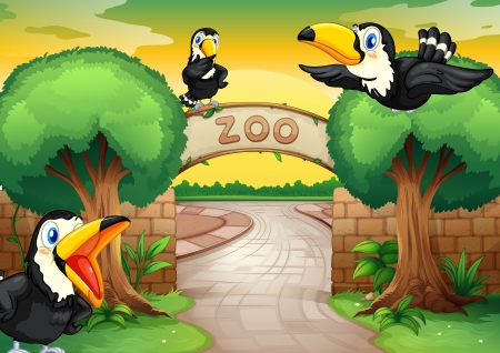 high road: illustration of a zoo and birds in a beautiful nature Illustration
