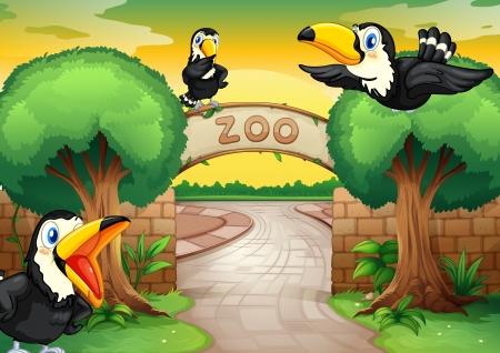 the zoo: ilustraci�n de un zool�gico y aves en una hermosa naturaleza Vectores