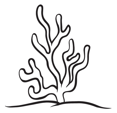 marine coral: illustration of a under water plant on a white background