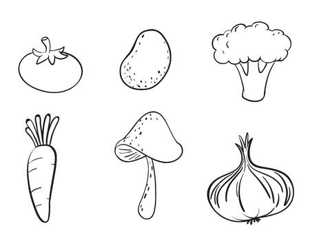 gedetailleerde illustratie van verschillende groenten op een witte achtergrond