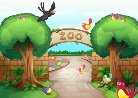 illustration zoo: Illustration of a zoo scene Illustration