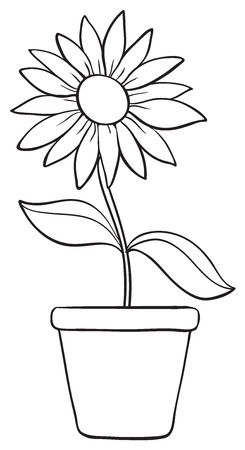 outline flower: illustration of a flower and a pot sketch on white background