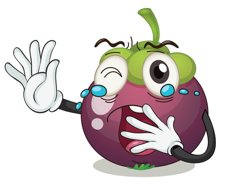 mangosteen: illustration of a berry on a white background Illustration