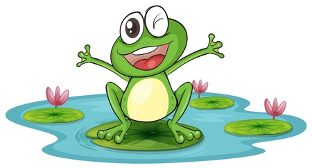 water lily: illustration of a frog and a water on a white background