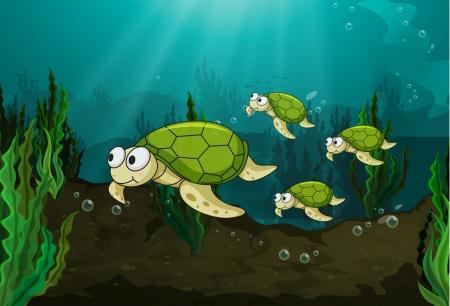 alga marina: ilustración de una tortuga bajo el agua del mar