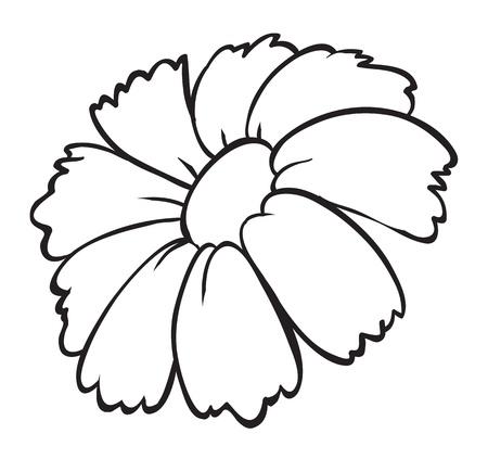outline flower: illustration of a flower sketch on white background Illustration