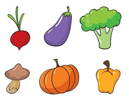 brinjal: illustration of various vegetables on a white background