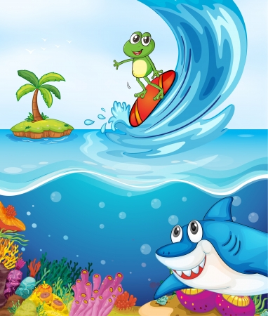 cartoon surfing: illustration of a frog and a shark fish in the sea Illustration