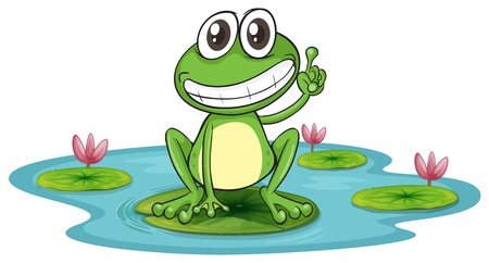 amphibians: illustration of a frog and a water on a white background