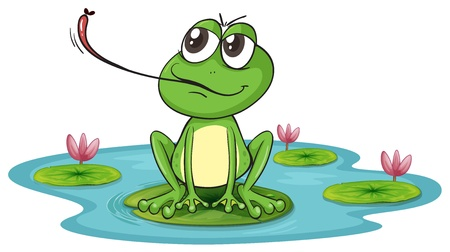 pond water: illustration of a frog on a white background