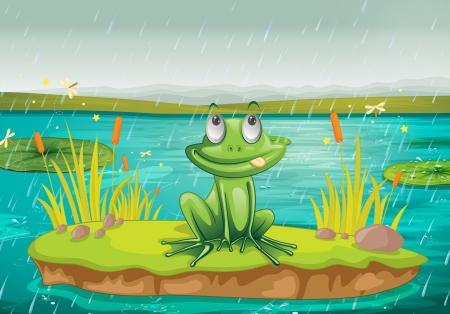 illustration of a frog and a water on a white background Vector