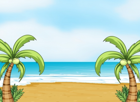 beach palm: illustration of an ocean and a beach in a beautiful nature