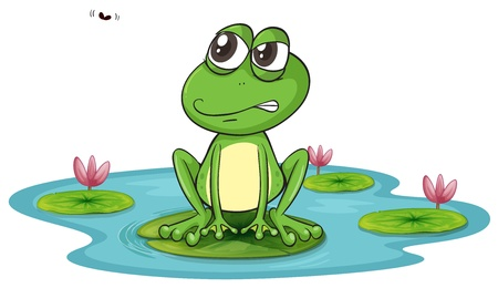 illustration of a frog and a water on a white background Stock Vector - 15946778