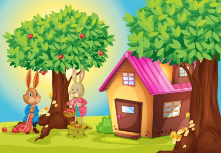 illustration of a rabbit and a house in a beautiful nature Stock Vector - 16027240