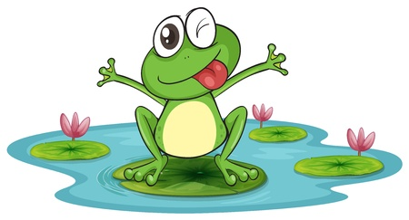 lagoas: ilustração de um sapo e água em um fundo branco Ilustração