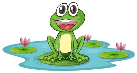 illustration of a frog and water on a white background Stock Vector - 16027165