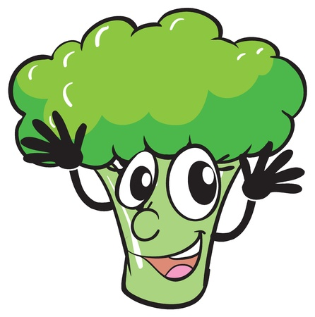 illustration of a broccoli on a white background Stock Vector - 16027186