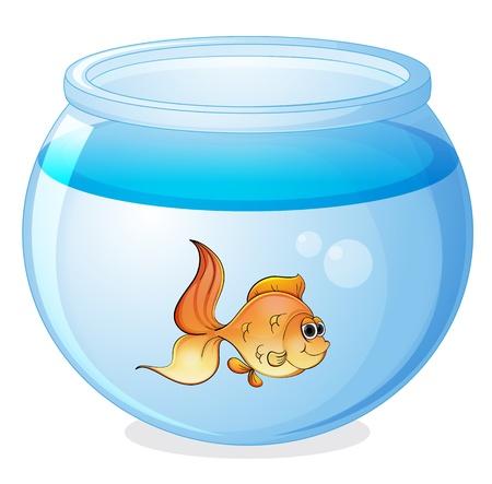 pez pecera: Ilustración de un pez y un recipiente en un fondo blanco