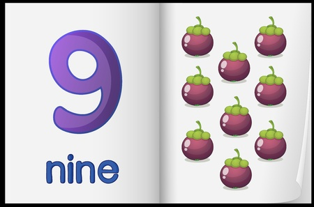 nine: Counting number illustration sheet in book