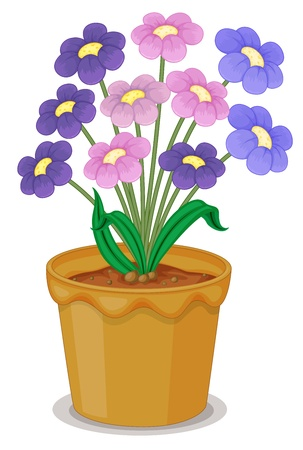 detailed illustration of flowers and a pot on a white background Vector