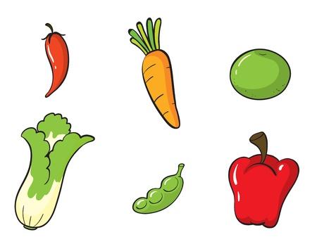 illustratie van de verschillende groenten op een witte achtergrond