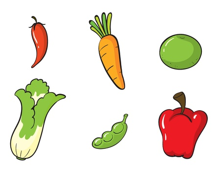 illustration of various vegetables on a white background