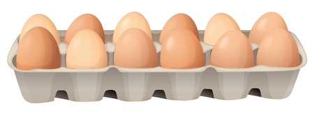 bandeja de comida: Ilustraci�n de los huevos en un fondo blanco